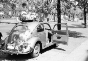 Schwarz Weiß Foto Käfer