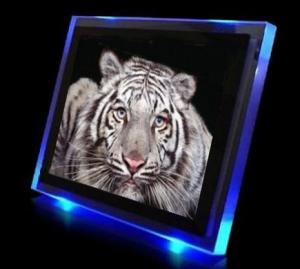 Tigerkopf im Leuchtrahmen