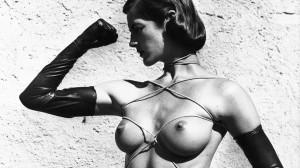 Bild von Helmut Newton