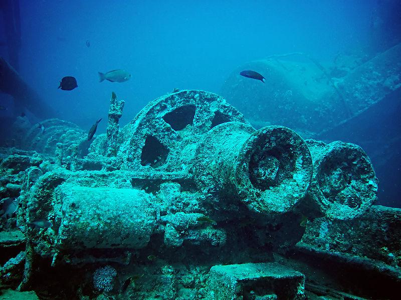 Die Unterwasserfotografie