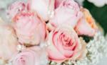 Hochzeitsfotografie - Bilder für die Ewigkeit